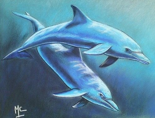 Dauphins page 4 - Dauphin dessin couleur ...