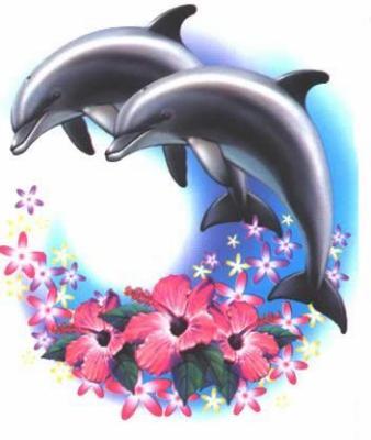 Dauphins page 5 - Dessins de dauphins ...